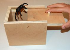 Funny spider scare box. Would make a great prank, unique funny gift idea or practical joke. Who do you know that it would be funny to prank with this? www.scarebox.com