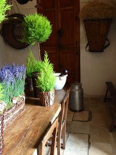 Lavender in the kitchen of Chateau Chenonceau