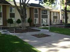 open 2 bed  Willow Tree Apartments