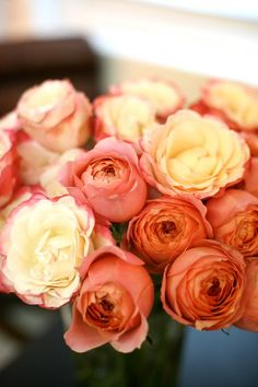Romantic Antike (dusty peach color) and Nostalgie (cream with pink edging) garden roses