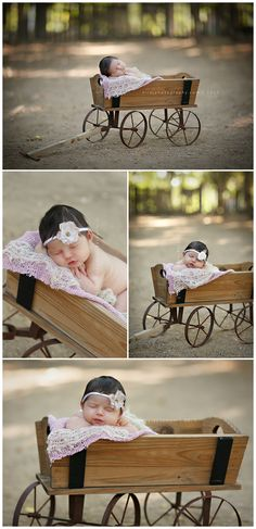 Kataleya - Tira J Photography:  Los Angeles Maternity and Childrens Photographer | Family Portrait Photographer | Newborn Photography | Outdoor Newborn Photography