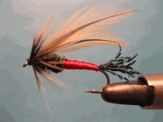 Spruce Fly: Trout & Steelhead Flies Streamers, & Nymphs