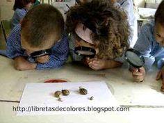 Cómo introducir a los niños en el mundo de la ciencia