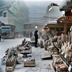 Yakvtsk, Russia is one of the coldest cities on earth. They buy fish at street markets.