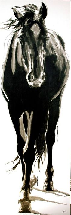 "large horse art, Canada;  Jennifer Mack,  jennifer@jmackfineart.com,  ""BLACKIE"" 72x24 India Ink on Canvas SOLD"