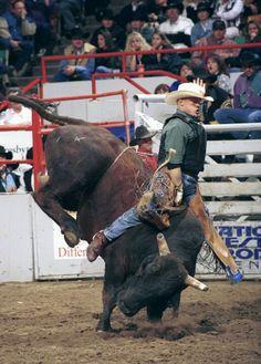 Bull rider #cowboy #rodeo