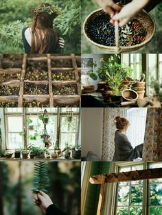 "demoniclour: "" demoniclour: ""Botanist Witch Aesthetic "" This is an aesthetic "" Diy Nature, Nature Witch, Witch Aesthetic, Aesthetic Collage, Nature Aesthetic, Herbal Witch, Practical Magic, Kitchen Witch, Botany"