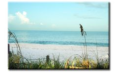 Bonita Springs Parks and Recreation - Bonita Beach