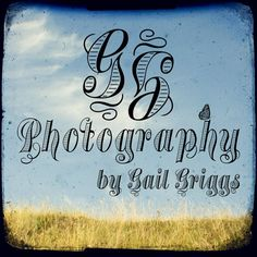 Browse unique items from GailGriggs on Etsy: photographs through the lens of a vintage camera Fine Art Photography, Manchester, Photographs, Lens, Unique, Artist, Vintage, Photos, Art Photography