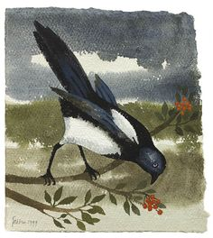 Mary Fedden   Magpie