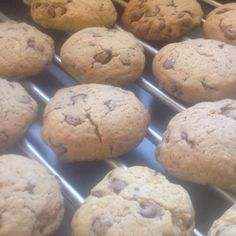 Recipe Choc Chip Chick Biscuits by Lynjoy45 - Recipe of category Baking - sweet