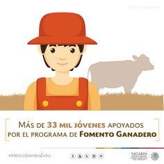 Más de 33 mil jóvenes apoyados por el Programa de Fomento Ganadero. SAGARPA SAGARPAMX #MéxicoSiembraÉxito