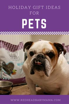 Gift Ideas for Pets;