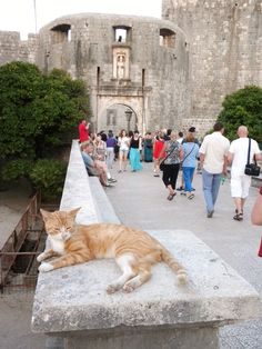 Greeting visitors at the entrance of the walled city in Dubrovnik, Croatia.