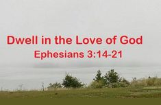 GOD Morning from, Trinity TX Today is Sunday 10-3-2021 Day 276 in the 2021 Journey Make It A Great Day, Everyday! Dwell in the Love of God Today's Scriptures: Ephesians 3:14-21 (NKJV) For this reason I bow my knees to the Father of our Lord Jesus Christ, from whom the whole family in heaven and earth is named,... Ephesians 3, Psalms, Scripture For Today, Psalm 118, Heaven On Earth, Gods Love, Jesus Christ, Lord, Jan 1