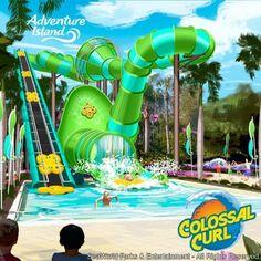 Tampa, FL (15 de Outubro de 2014) - Os visitantes do Adventure Island, parque aquático do SeaWord Parks & Entertainment localizado em Tampa (FL) em frente ao Busch Gardens,...