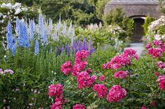 Roses in the Cottage Garden - RHS Rosemoor