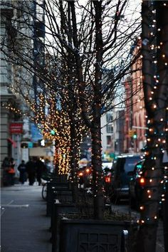 Christmas Christmas lights in NYC. Lit trees always remind me of living in Dallas. ❤Christmas lights in NYC. Lit trees always remind me of living in Dallas. New York Christmas, White Christmas, Christmas Nails, Xmas, Cozy Christmas, Holiday Nails, Christmas 2019, Family Christmas, Vintage Christmas