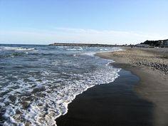 la orilla en la playa de la paella