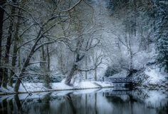 Winter morning with fresh snow in Pruhonice Park near prague