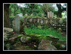 Irish Wishing Site    Very old Celtic / Christian religious site. Was way off the beaten path in the Galtee Woods.