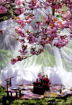 a beautifully fancy picnic in the garden