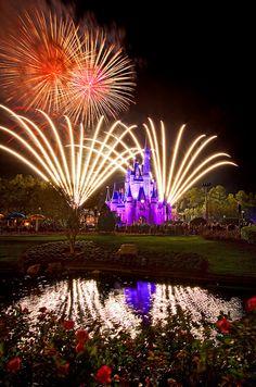 Disney World fireworks Disney World Vacation Planning, Disney World Resorts, Disney Vacations, Walt Disney World, Disney Parks, Disney Word, Disney Fun, Disney Magic, Disney World Fireworks