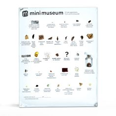 Mini Museum: A pocket-sized collection of rare specimens from earth and beyond! (includes bits such as lunar rock, triceratops horn, and mummy wrap) Happy Birthday Me, It's Your Birthday, Mummy Wrap, Lets Get Weird, Egyptian Mummies, Research Scientist, Exhibition Ideas, Seven Years Old, Science Museum