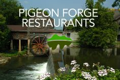 Looking for a place to eat in Pigeon Forge? Click here for all the restaurants in Pigeon Forge! http://www.visitmysmokies.com/what-to-do/dining/dining_pigeon_forge/