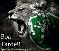 SCP Portugal Soccer, Sports Clubs, Scp, Cristiano Ronaldo, Lion, Bas Dost, Animals, Lion Images, Lion Art
