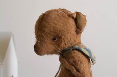 Teddy Bear Roman