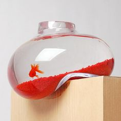 Bubble Tank Fish Bowl.....would look cool with flowers instead.....