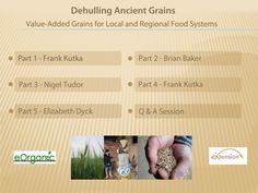 eOrganic - excellent discussion of grain dehullers available for small and medium sized operations. Farm Tools And Equipment, Food System, Hobby Farms, Grains, Permaculture, Agriculture, Homesteading, Organic, Medium