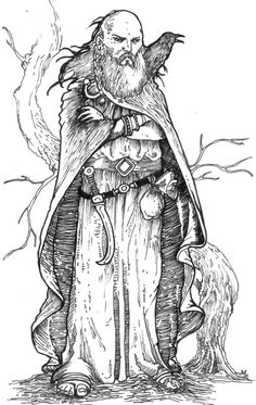 Druid by pictishscout