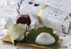 Japanese sweets  Kashiwa-Mochichi たねや  専門家推薦 端午の節句に食べたい、かしわ餅10品 : 日本経済新聞