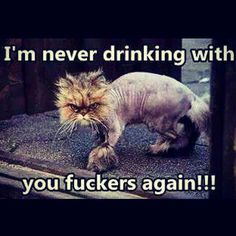 I am never drinking with you Fuckers again!!!
