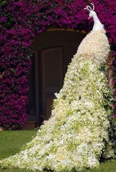Beautiful Gardens, Beautiful Flowers, White Flowers, Cascading Flowers, Purple Flowers, Beautiful Pictures, Send Flowers, White Orchids, Flower Bouquets