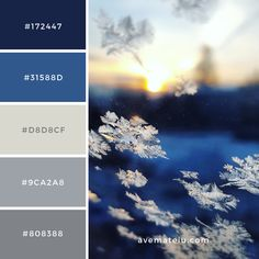 Snow flake, ice, crystal and window Color Palette Scheme Color, Color Schemes Colour Palettes, Pastel Colour Palette, Colour Pallette, Pastel Colors, Color Combos, Colours, Blue Palette, Couleur Html