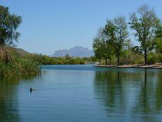 Red Mountain Lake, Mesa. Arizona