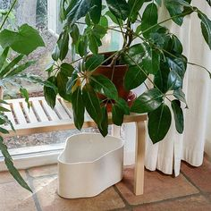 Aino Aalto, es conocida principalmente por sus diseños en vidrio, cerámica y tela. Uno de ellos, el macetero Riihtie diseñador en 1937 e inspirado en los azulejos de la casa experimental de Muuratsalo, acaba de aterrizar en nuestra e-shop. ¡Déjate enamorar! #DomésticoShop #design #designinterior #interiordesign #interior4you #interior123 #interiordecor #interiorstyling #instahome #home #nordichome #interiorlovers #decoration #love #styling #homedecor #interiorinspiration #color #homestyle…