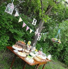 outdoor baby shower - Google Search