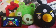 Todos los juegos Angry Birds gratis en la tienda Windows Phone