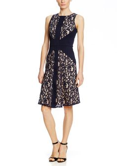TAYLOR Sleeveless Lace Colorblock Fit and Flare Dress