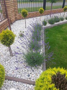 Lawendowo Courtyard Landscaping, Minimalist Garden, Dream Garden, Garden Inspiration, Garden Design, New Homes, Sidewalk, Exterior, Landscape