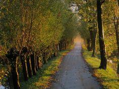 30-10-2012 - 100903106889959017428 - Picasa Web Albums