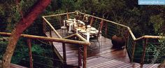Luxury Treetop Lodges | Glamping South Africa