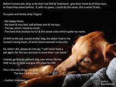 ⭐️犬の遺言⭐️  人間は死ぬ前に最後の意志と遺言を書いて家に置いて行きます    もし、私の足で同じ事が出来たなら、私は求めます...    貧しく寂しい迷い犬に、私は私の幸せな家と私のボウルと保温カーペットをあげます    柔らかい枕と私の玩具すべて、私がたくさん愛した膝も、私を撫でてくれる手も、私の名前を呼ぶ優しい声も…  私は、悲しく、怖がらせられたシェルター犬、私は限界でした    そうそこでは全然、思われなかったから    私は人間の愛情深い心のある場所に決意します    私が死んだら、「多くの損失と苦痛の為に再びペットを持たない」と、どうか言わないでください    代わりに愛されていない犬を見つけて、彼の生活に喜びまたは希望と私の場所を与えてください    これは私が置いて行く愛情を与える事が出来る唯一の物です    作者不詳