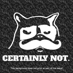 GRUMPY CAT CERTAINLY NOT HANDLEBAR MUSTACHE DECAL STICKER TAILGATING ANGRY DRIVE