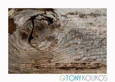 crackled, wood, woodgrain, log, trunk, rough, texture, rings
