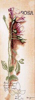 Rosa Botanical - Lanarte